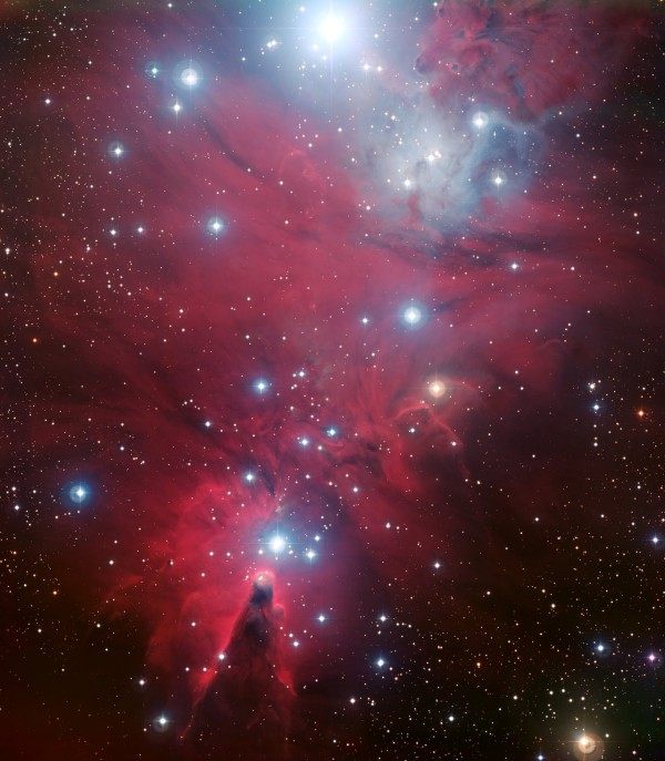 NGC 2264 and the Christmas Tree cluster*