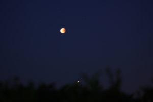 IMG_4554-månen-o-Mars-300x200[1]