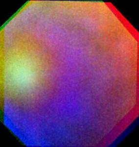 Venus_glory_large-550x580