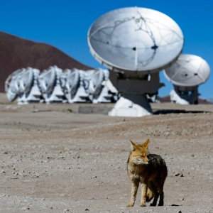 chile_nikon_alma_telescope_fox_antenna_eso_radiotelescope-474134